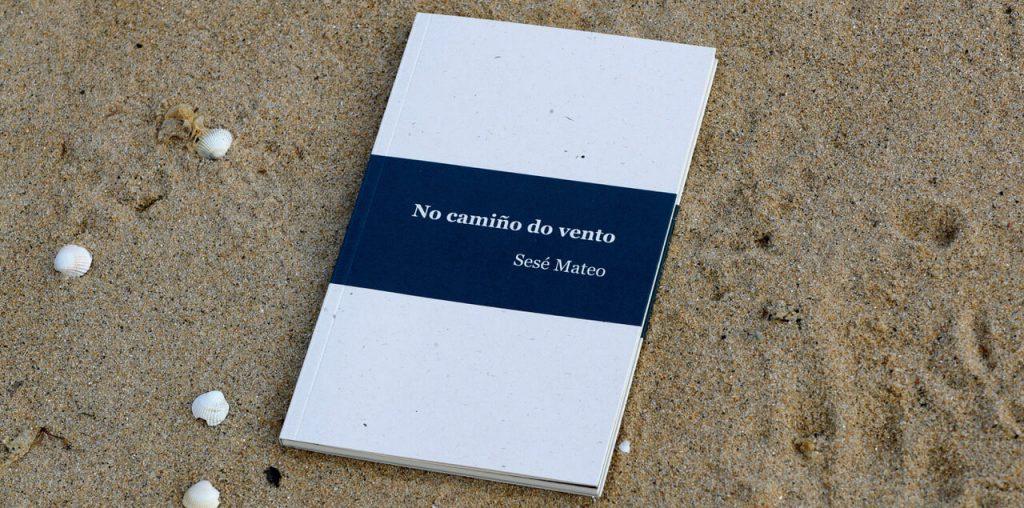 No camiño do vento de Sesé Mateo García